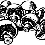 Mushrooms - for cookery book - Quarto Publishing