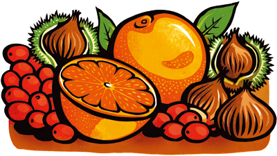 Orange and chestnut stuffing packaging illustration - Shropshire Spice