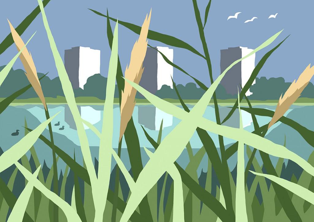 Wetland fluffy